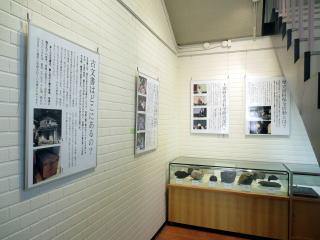 展示スペースの概観